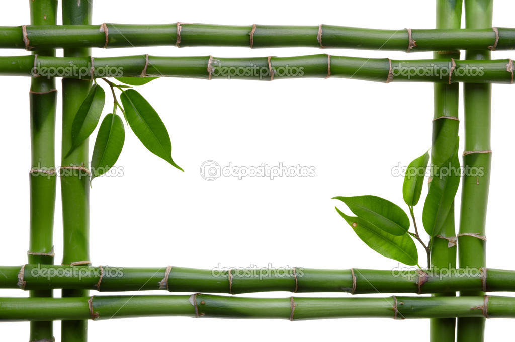 Bamboo frame on the white background  Foto de Stock   #1050756