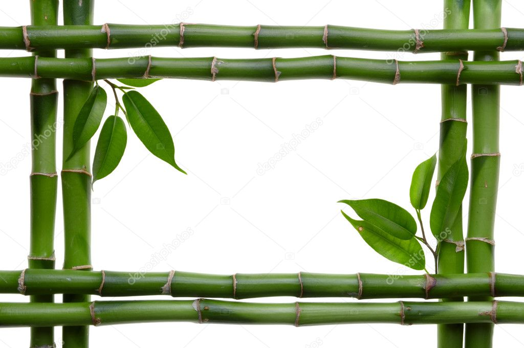 Bamboo frame on the white background  Photo #1050756
