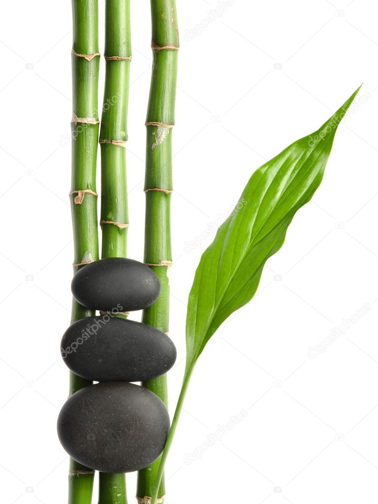Zen stones and plant  — Stock Photo #1079961