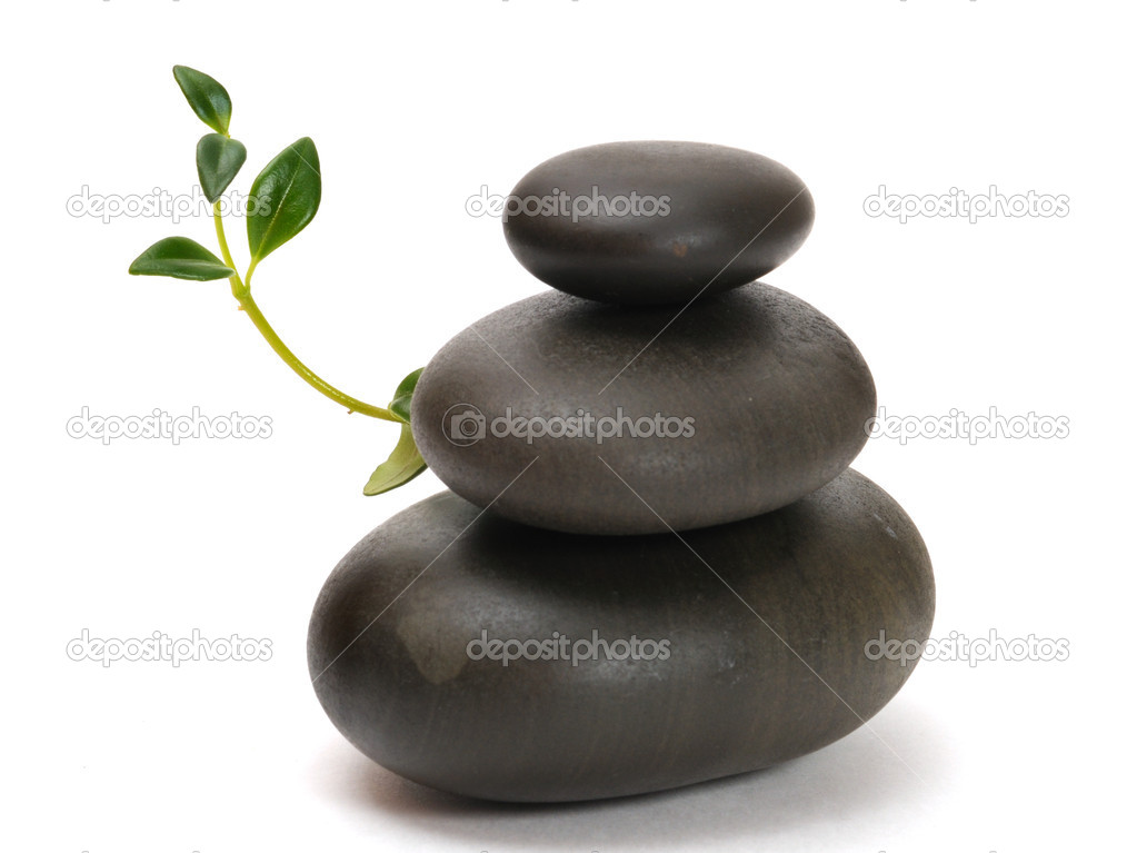 Zen stones and plant on the white background — Stock Photo #1702390