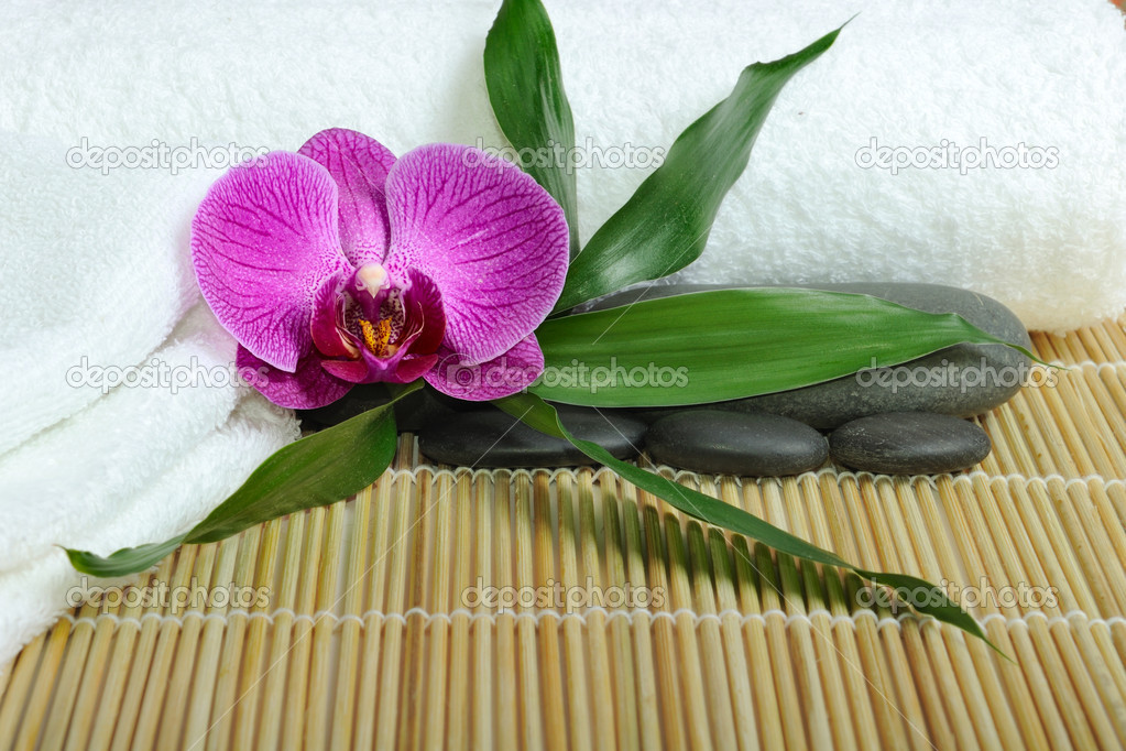 Spa concept with orchid and stones — Stock Photo #2006246