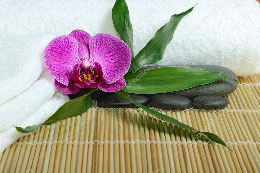 Spa concept with orchid and stones  Foto Stock #2006246