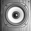 Speaker — Stock Photo #1020623