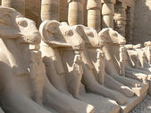 Ancient statues in a Egypt — Stock Photo