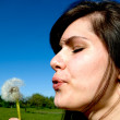 Foto Stock: Girl on meadow