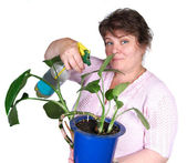 Woman fertilize flower — Stockfoto
