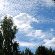Clouds — Stock Photo #1107649