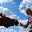 Girl with a horse - Stock Photo