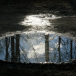Reflected in puddle — Stock Photo #1123841