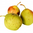 Pears — Stock Photo #1149320