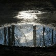 Stock Photo: Reflected in puddle