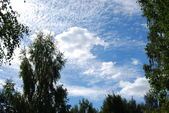 Clouds — Photo