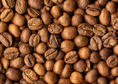 Grain coffee — Stock Photo