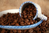 Beans of coffee — Stock Photo