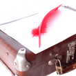 Antique red pen and suitcase — Stok fotoğraf