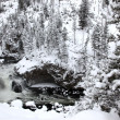 Winter season at falls of Yellowstone Na — Stock Photo