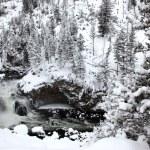 Winter season at falls of Yellowstone Na — Stock Photo #1068549