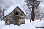 Winter in rural area — Stock Photo