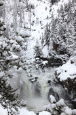 Saison d'hiver à chutes d'yellowstone na — Photo