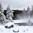 Winter season at lake of Yellowstone Nat — Stock Photo #1070721