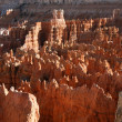 Bryce canyon, Utah, USA — Stock Photo