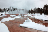 Saison d'hiver en pa national d'yellowstone — Photo
