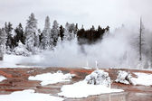 Vintersäsongen i yellowstone national pa — Stockfoto