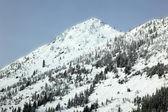 Winter Season in Snowy Mountain, Mountan — Stock Photo