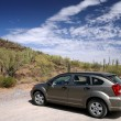 Car in the Organ Pipe National Monument — Stock Photo