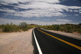 Road in the Organ Pipe National Monument — Stock Photo
