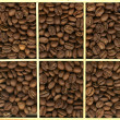 Stock Photo: Grain coffee