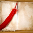 Old Message Book with red feather — Stock Photo