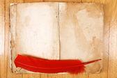 Książki archiwalne wiadomości z piór — Zdjęcie stockowe