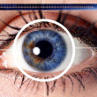 Scan cyber eye for security - Stock Photo