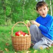 Boy with apples — Stock Photo #2238407