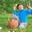 Little boy outdoors with apples — Stock Photo