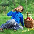 Boy with apples — Stock Photo #2239111