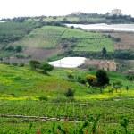 向农村地区的西西里经典视图 — 图库照片