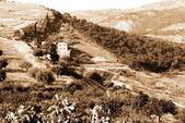 Eski i̇talya, alan agrigento şehir, sicilya — Stok fotoğraf