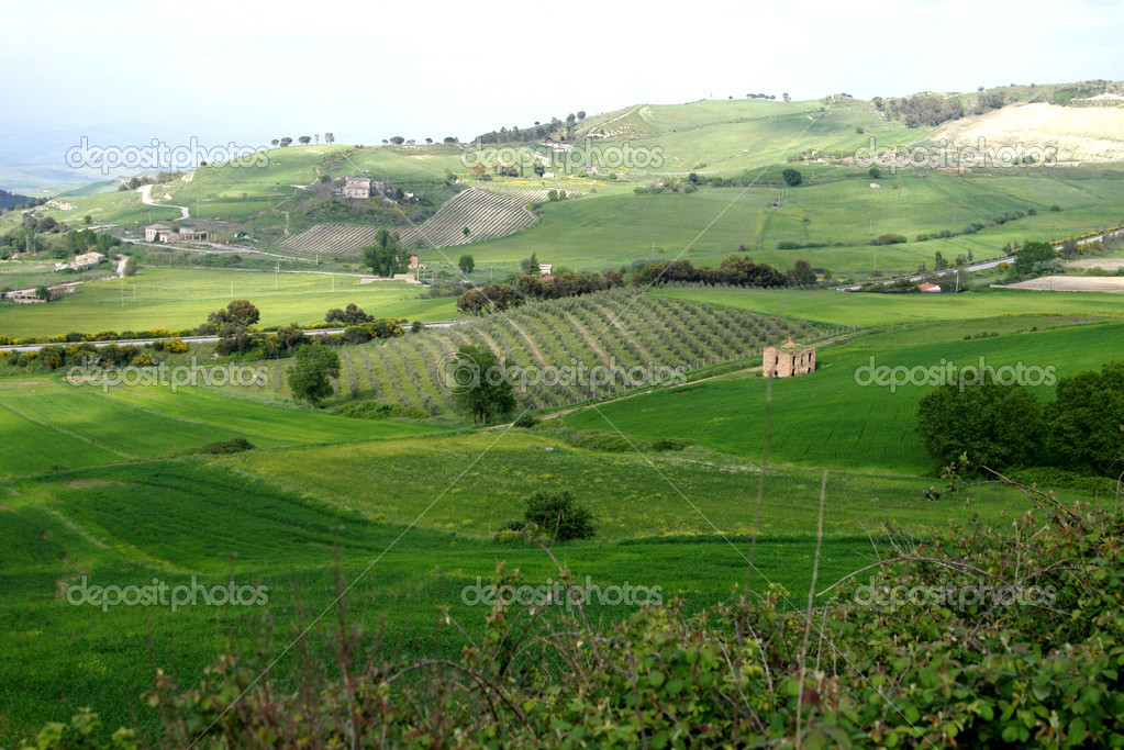 Old Italy , rural Sicily area  Foto Stock #2278525