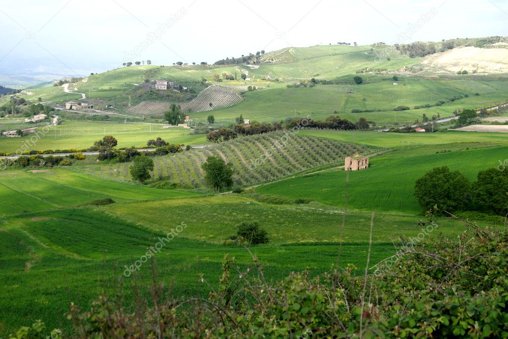 Old Italy , rural Sicily area — Foto de Stock   #2278525