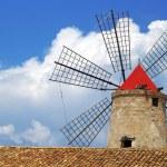 Old Italy ,Sicily, windmill at Trapani — Stock Photo