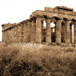 Greek temple in Selinunte, Sicily — Stock Photo