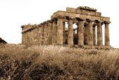 Greek temple in Selinunte, Sicily — Stock Photo