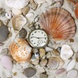 Sea Shells and vintage clock — Photo
