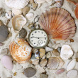 Sea Shells and vintage clock — Stock Photo