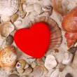 Sea Shells and red heart in sand — Stock Photo