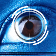 Scan right eye for security - Stock Photo