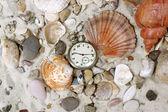 Sea Shells and vintage clock — Stock Photo