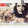 Royalty-Free Stock Photo: Stamp  show Che Guevara